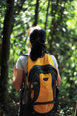 Back of woman hiker in tropical jungle — Stock Photo