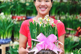 Asian woman with daffodil flower potting — Stock Photo
