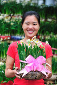 Asian woman with daffodil flowers — Stock Photo