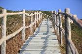 Stairs to peak — Stock Photo