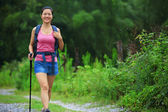Hiker in mountain forest — Stock Photo