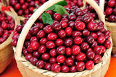 Picked fresh red cherry fruits — Stock Photo
