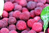 Red bayberry — Stock Photo