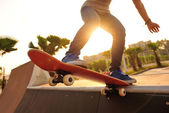 Woman skateboarder — Stock Photo