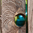 Hole in Wood Fence a hole in a old wooden fence — Stock Photo #23580561