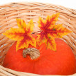 A pumpkin with colorful autumn leaves in basket — Stock Photo