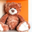 A brown teddy bear in the child's room — Stock Photo