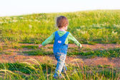 Child in the jeans coverall walk with vigorous strides — Stock Photo