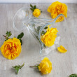 Glass goblet and yellow roses on light board — Stok Fotoğraf #25424871