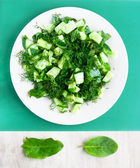 Vegetarian cucumber salad on the round white plate and leafs doc — Stock Photo