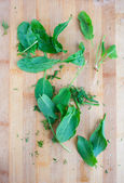 Green leafs sorre, spinach on the wood board — Stock Photo