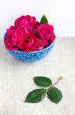 Many rose in the blue plate and leaf on the white wood board — Stock Photo