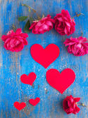 Big and small hearts and many red rose on the blue — Stock Photo