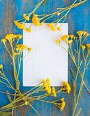 Frame of wild flowers and paper on the blue — 图库照片