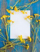 Marco de flores silvestres y papel en el azul — Foto de Stock