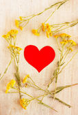Heart in the frame of wild flowers — Stock Photo