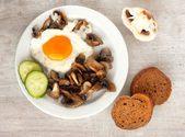 Brown bread, cucumbe, fried eggs and champignons — Stock Photo