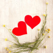 Two hearts in the nest — Stock Photo #26756949