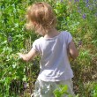 Small girl gather berries — Stockfoto #27147679