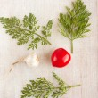 Stock Photo: Two diverse vegetables - garlic and tomato