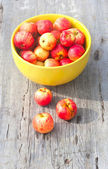 Many small red apples — Stock Photo