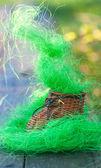 Brinquedo pequeno entupir rica grama artificial — Fotografia Stock