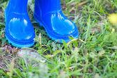 Dark blue wellington boots — Stock Photo