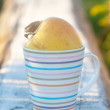 Apple in the stripy cup — Stock Photo