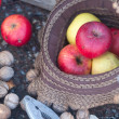Red apples in the bonnet and walnuts — Stock Photo