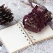 Stock Photo: Chocolate on notebook and strobile