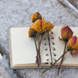Several dry yellow roses on the notebook — Stock Photo #39700363