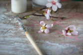 Brush in white paint and blooming — Stock Photo
