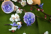 Eggshell filled with blue flowers  — Stock Photo