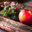 Blooming sprig of apple and apple — Stock Photo