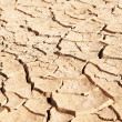 Dried up and cracked mud in dry waterhole — Stock Photo #25248995