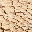 Dry cracked mud in dried up waterhole — Stock Photo #27148509