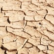 Dry cracked mud in dried up waterhole — Stock Photo