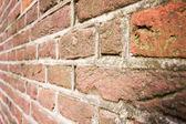 Vieux mur de briques de mousse de plus en plus à ce sujet — Photo