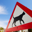 Road warning sign indicating cats are crossing — Stock Photo