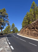 Winding mountain road in beautiful landscape on Tenerife leading to the volcano Tiede, Canary Islands — Stock Photo