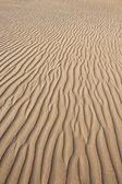 Golden sand with texture, Maspalomas, Canary Islands — Stock Photo