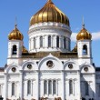 Temple of Christ the Savior in Moscow — Stock Photo #27462965