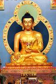 Sitting gold Buddha in datsane Rinpoche Bagsha near Ulan ude — Stock Photo
