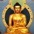 Very beautiful statue of the Buddha — Stockfoto