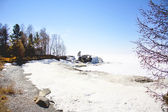 The shore of the frozen lake — Stockfoto