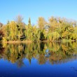 Reflection of the fall in the water — Stock Photo #34657465