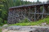 Kinsol Trestle Bridge — Stock Photo