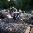 Stock Photo: Pensive boy on felled trees