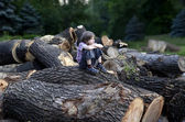 Pensive boy on the felled trees — Stock Photo