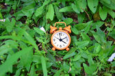 Clock in the grass — Stock Photo